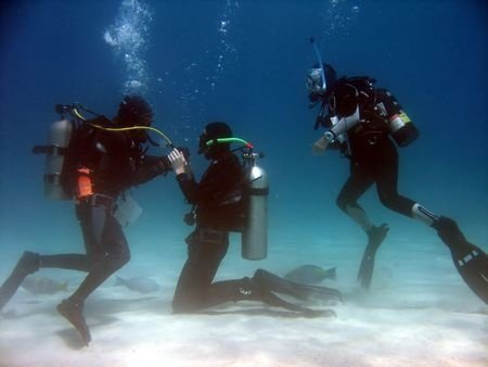 First SCUBA Dive Expectations