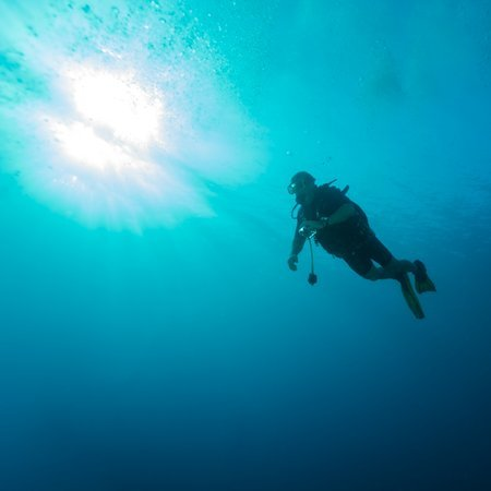 Tips for Buying Your First Scuba Wetsuit