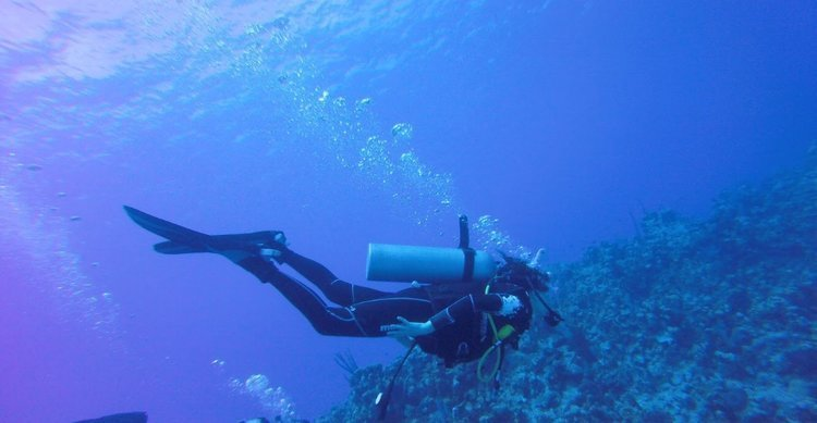 Why you need to go diving in Grand Cayman